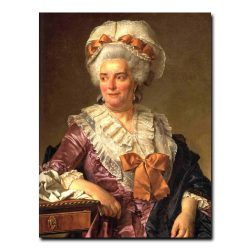 244w_portrait-of-madame-charles-pierre-pecoul-nee-potain-mother-in-law-of-the-artist-1784